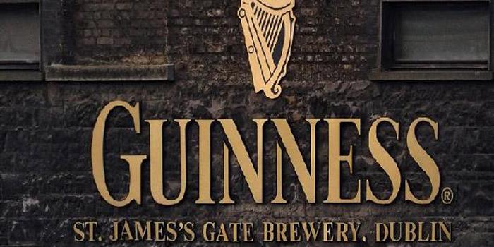 Rybí vnitřnosti se přidávají do piva Guinness