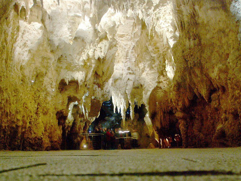 Jeskyně světlušek na Novém Zélandu