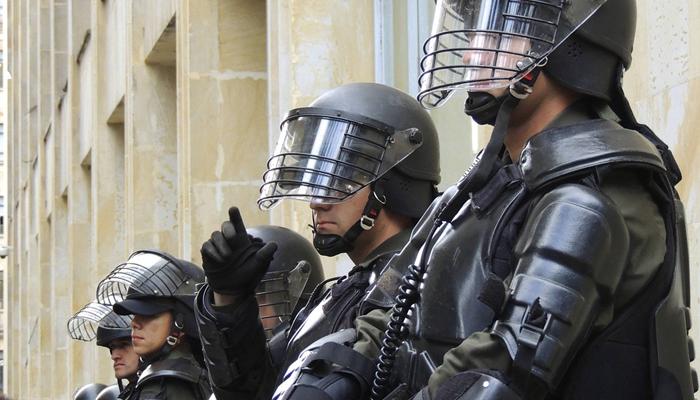 Vosička, která zvládá i policejní práci